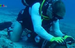 Internet đi quốc tế ảnh hưởng do sự cố cáp quang biển