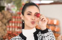Hoa hậu Thế giới 2013 siêu dễ thương trong bộ ảnh khám phá Đà Lạt