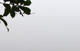 Hà Nội chìm trong sương mù như ở Sa Pa