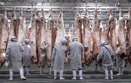 Thiếu thịt, Trung Quốc gỡ bỏ lệnh cấm suốt 18 năm với Nhật Bản