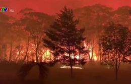 Australia chi gần 80 triệu AUD điều trị chấn thương cho nạn nhân cháy rừng