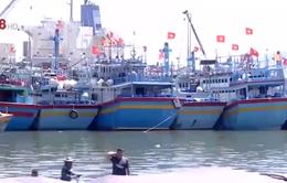 Bình Định tước giấy phép tàu cá vi phạm vùng biển nước ngoài