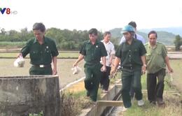 Cựu chiến binh tham gia bảo vệ môi trường trên đồng ruộng