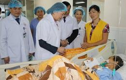 Phó Chủ tịch nước Đặng Thị Ngọc Thịnh làm việc tại Thái Nguyên