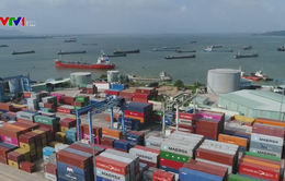 Tổng trị giá xuất nhập khẩu của cả nước trong tháng 1 đạt 36,62 tỷ USD
