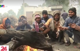 New Delhi trải qua mùa Đông lạnh nhất trong một thế kỷ