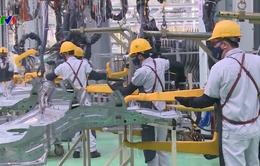 Môi trường đầu tư minh bạch, công bằng – Giải pháp thu hút FDI bền vững