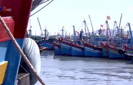 Tước giấy phép tàu cá vi phạm vùng biển nước ngoài
