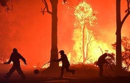 Australia trợ cấp cho lính cứu hỏa tình nguyện