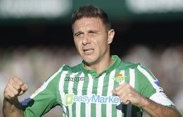 Tiền vệ kỳ cựu Joaquin gia hạn hợp đồng với Real Betis