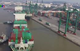 Xuất nhập khẩu đạt trên 510 tỷ USD