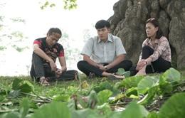 Cô gái nhà người ta: Bộ phim tuổi trẻ gợi nhiều cảm xúc và mang hương vị đặc biệt