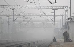 Giao thông tại Ấn Độ bị gián đoạn do sương mù