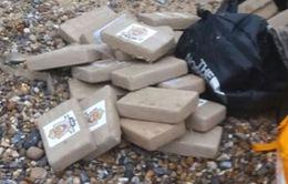 Nhà chức trách đau đầu trước tình trạng cocaine dạt vào bờ biển nhiều nước