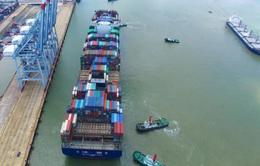 11 tháng, Việt Nam xuất siêu 9,12 tỷ USD