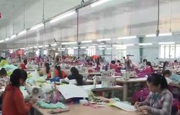 Đà Nẵng cải thiện chỉ số sản xuất công nghiệp năm 2020