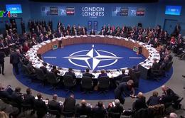 NATO ra tuyên bố chung khẳng định tình đoàn kết