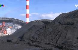 Cần nhiều giải pháp đảm bảo môi trường lâu dài tại Nhà máy nhiệt điện Vĩnh Tân