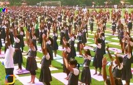 85.000 học sinh tập yoga tập thể