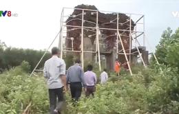 Quảng Nam: cộng đồng tham gia bảo vệ di tích