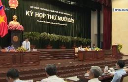 HĐND TP.HCM chất vấn cấp giấy chứng nhận và chất lượng không khí