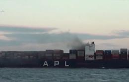 Tàu hàng container bốc cháy trên vùng biển Bà Rịa - Vũng Tàu