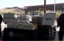 Mỹ thu giữ lượng fentanyl lớn nhất từ trước đến nay