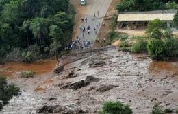 Thiệt hại môi trường sau thảm họa vỡ đập tại Brazil