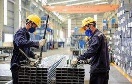 Hoa Sen: Vẫn bố trí sản xuất và bán hàng trong Tết Kỷ Hợi 2019