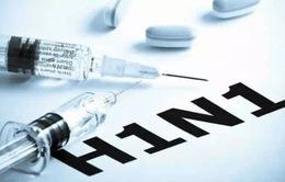 Dịch cúm diễn biến nguy hiểm tại châu Âu
