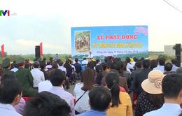 Quảng Trị tổ chức Tết trồng cây