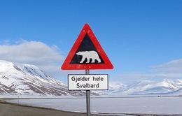 Siêu vi khuẩn kháng thuốc xuất hiện ở Bắc Cực
