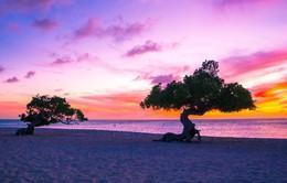10 điểm du lịch lãng mạn nhất thế giới cho Valentine 2019