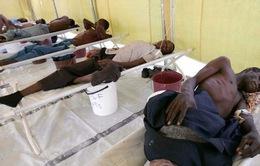 Nigeria tuyên bố bùng phát dịch sốt xuất huyết Lassa