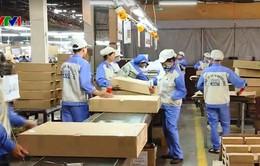 Khai Xuân, doanh nghiệp khẩn trương sản xuất kinh doanh