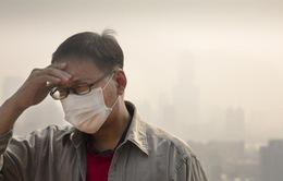 Trung Quốc: Ô nhiễm môi trường có thể gây rối loạn cương dương