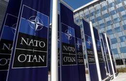 Khai mạc Hội nghị Bộ trưởng Quốc phòng NATO