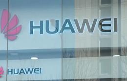 Mỹ gia tăng sức ép lên các nước châu Âu về thiết bị Huawei