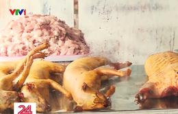 """Thịt mèo """"đội lốt"""" thịt thú rừng vẫn được bày bán ở chùa Hương"""