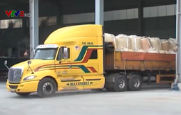 Xuất khẩu lô hàng alumin đầu tiên sang UAE
