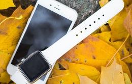 """Tại Mỹ, đồng hồ thông minh đang khiến smartphone phải cảm thấy """"xấu hổ"""""""