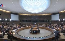 NATO nỗ lực cứu vãn Hiệp ước INF