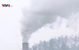 Hà Tĩnh: Người dân khốn khổ vì nhà máy xử lý rác thải gây ô nhiễm