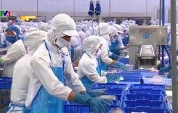 Ngành thủy sản với mục tiêu xuất khẩu năm 2019 đạt 10,5 tỷ USD