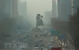 Hàn Quốc thông qua luật đặc biệt nhằm giảm ô nhiễm bụi mịn