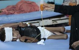 Yemen có thể mất toàn bộ thế hệ trẻ em vì nạn đói