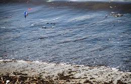 Đà Nẵng: Gần 4km bờ biển nước đen ngòm, bốc mùi hôi