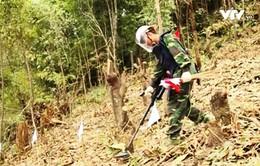 Việt Nam vẫn còn nhiều vùng đất bị ô nhiễm bom mìn