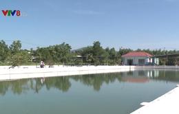 Đà Nẵng: Nước sinh hoạt có vị lợ, đục bất thường