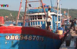Quảng Ngãi: Nhiều tàu cá nằm bờ vì thiếu lao động sau Tết
